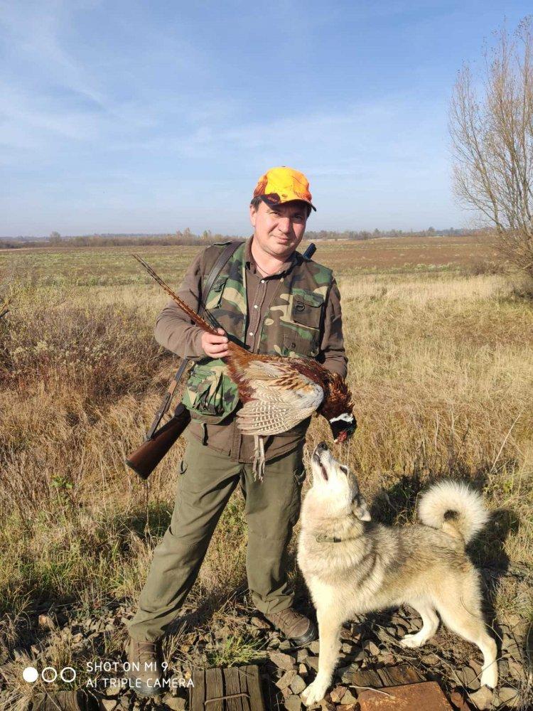 полювання на фазана.jpg