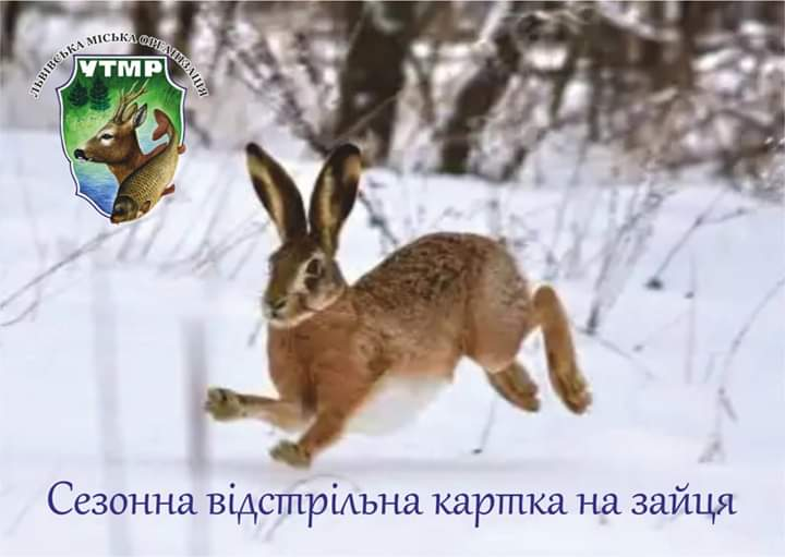 FB_IMG_1558682313831.jpg