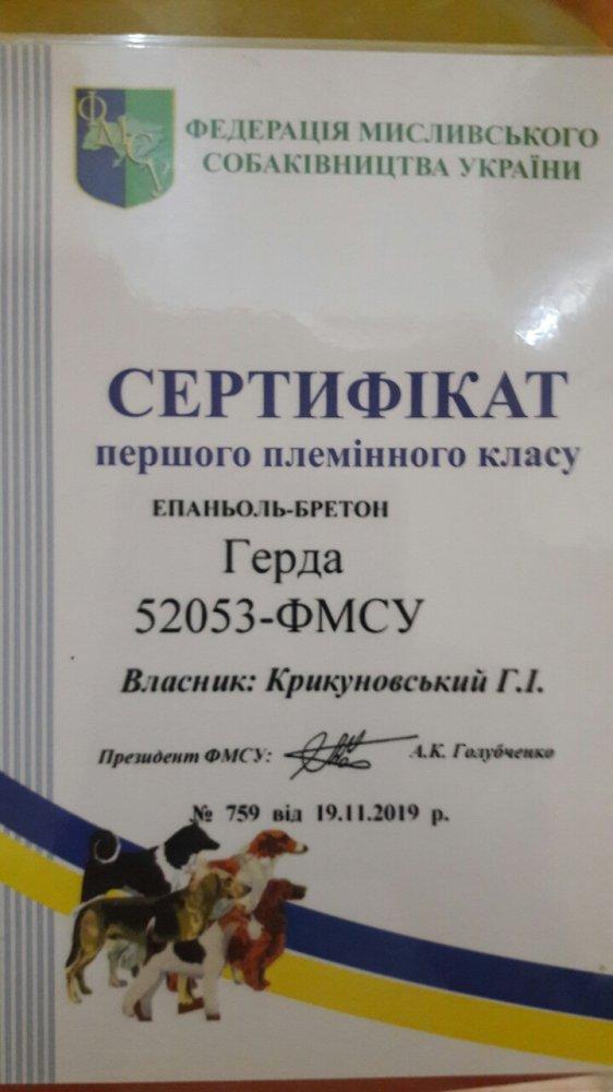 IMG-c6889af35e487635f497e0b072890b9f-V.jpg
