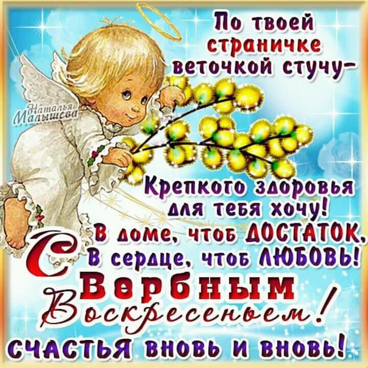 FB_IMG_15224969386203354.jpg